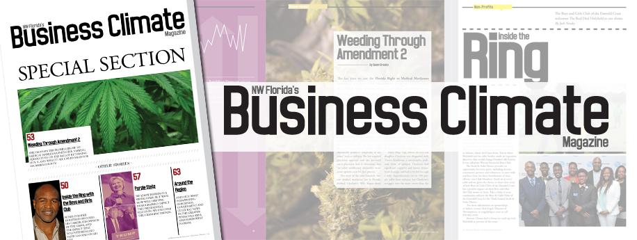 Issue Feature: Weeding Through Amendment 2
