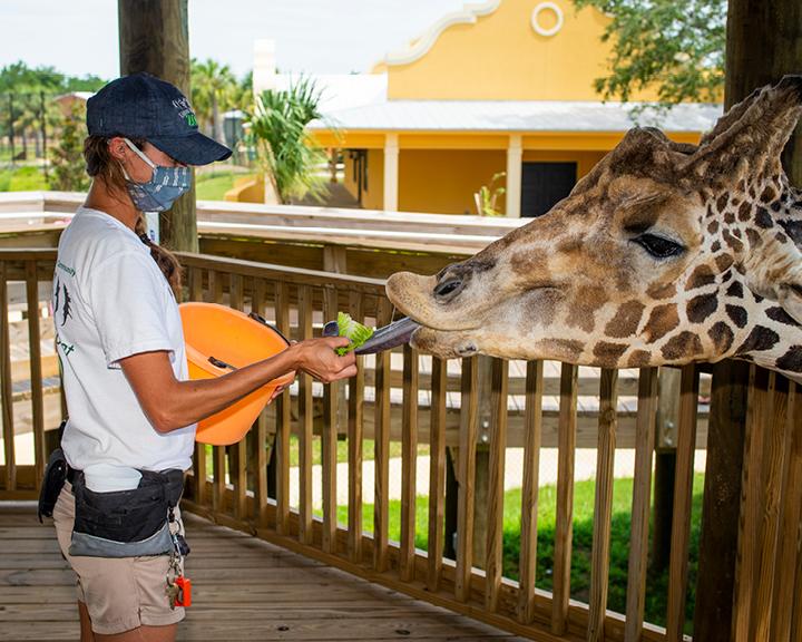 Education, Conservation and Interaction at the new Alabama Gulf Coast Zoo -  Ballinger Publishing